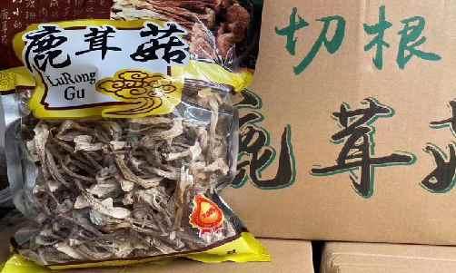 鹿茸菇价格多少钱一斤/克?2020年鹿茸菇价格(批发价格)行情